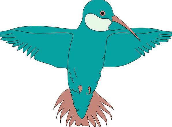 Hummingbird Fowl Spread Feast Bird Wings Annexes B