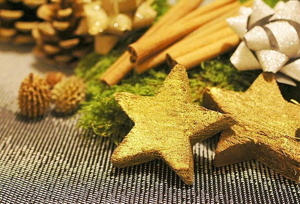 Poinsettia Christmas Decorations Christmas Decorat