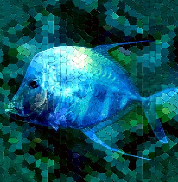 Mosaic Medley Textures Inlay Backgrounds Blue Azur