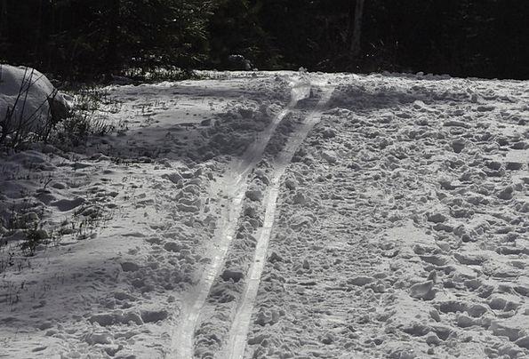 Track Path Season Skiing Winter