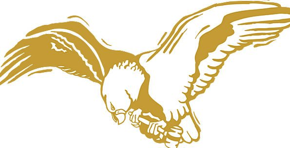 Eagle Fowl Gold Gilded Bird Wings Annexes Feathers