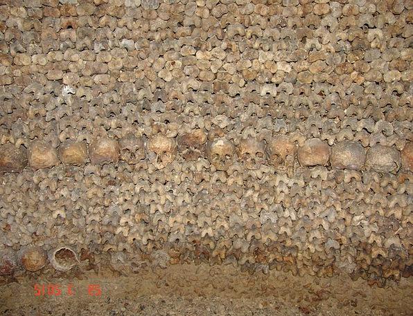 Bones Frames Mind Catacomb Crypt Skull