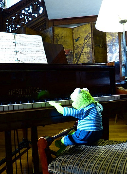 Kermit Piano Keyboard Frog Play Production Classic