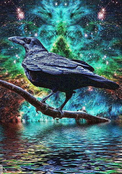 Raven Scoff Imaginary Surreal Strange Fantasy Abst