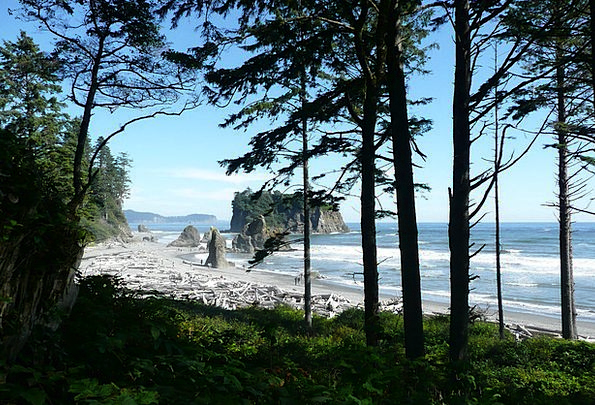 Ruby Garnet Vacation Seashore Travel Washington Be
