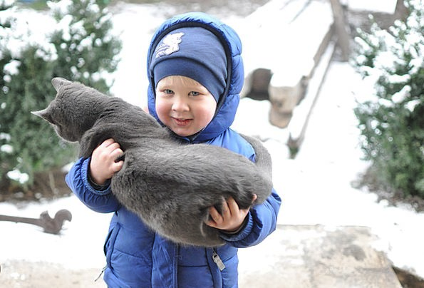 Small Child Winter Season Kitten Friendship Bond