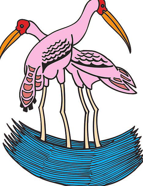 Storks Tinted Water Aquatic Painted India Two Bina