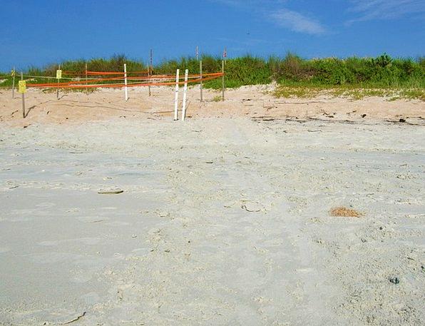 Dunes Banks Vacation Shingle Travel Beach Sand Sky