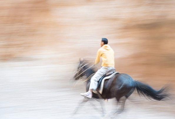 Morocco Landscapes Nature Horse Mount Sahara Natur