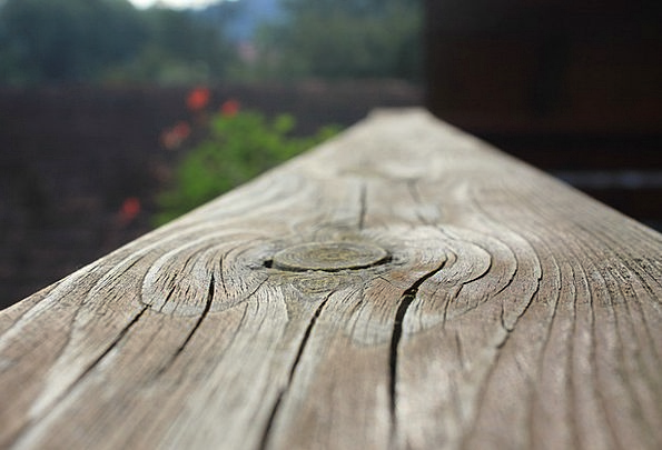 Wood Timber Landscapes Countryside Nature Brown Ch
