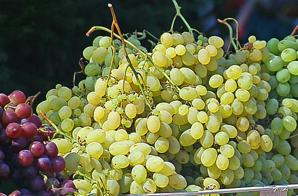 Grapes Drink Collection Food Bunches Of Grapes Gro