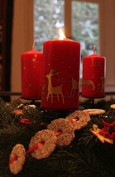 Advent Wreath Taper Red Bloodshot Candle Arrangeme