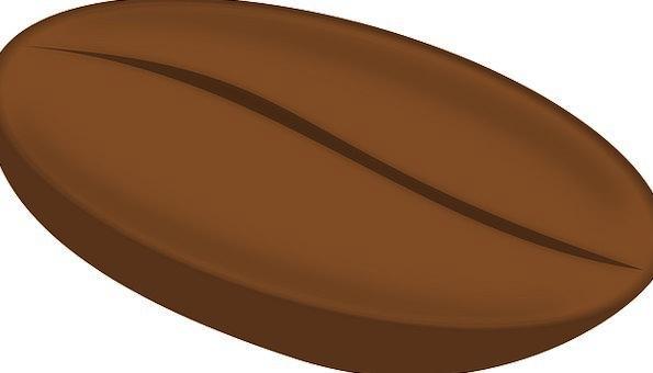 Bean Chocolate Seed Kernel Coffee Brown Processed