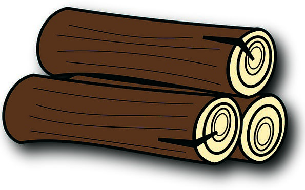 Firewood Kindling Sapling Trunk Stem Tree Logs Woo
