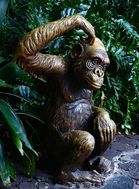 Monkey Ape Funny Humorous Fig Consider Reflect Scr