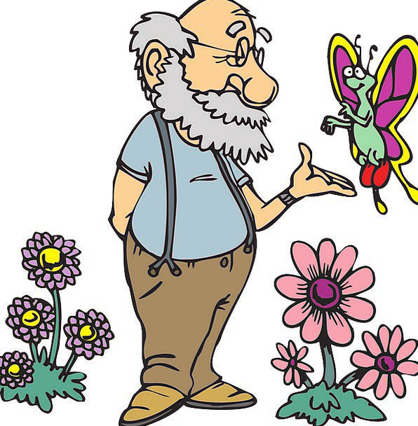 Old Ancient Gentleman Flowers Plants Man Butterfly