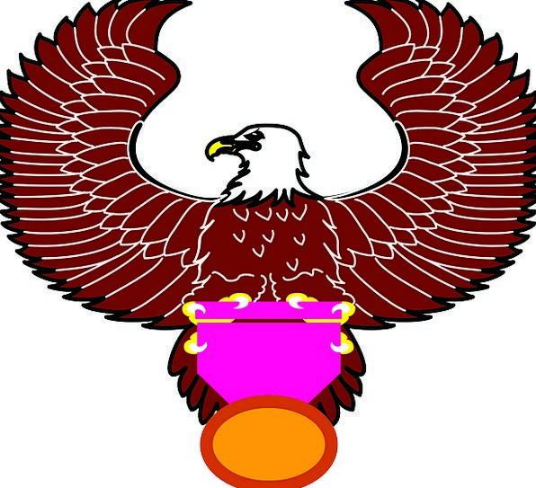 Spread Feast Bird Fowl Eagle Wings Annexes Feather