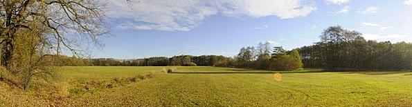 Field Arena Landscapes Plants Nature Sun Trees Nat