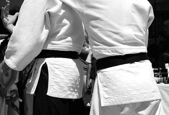 Martial Arts Japan Aikido Attack Black Belt Sporti