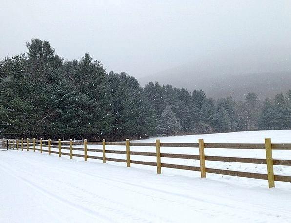Harmony Ny Landscapes Snowflake Nature White Snowy