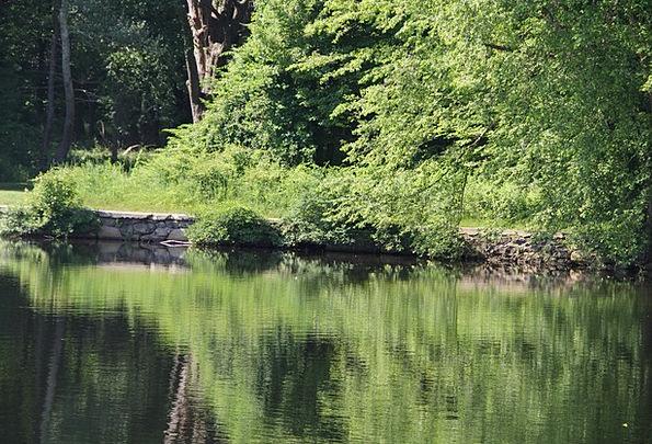 Pentucket Landscapes Freshwater Nature Reflection