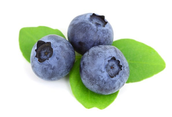 Berry Drink Azure Food Blueberry Blue Raw Food Nou