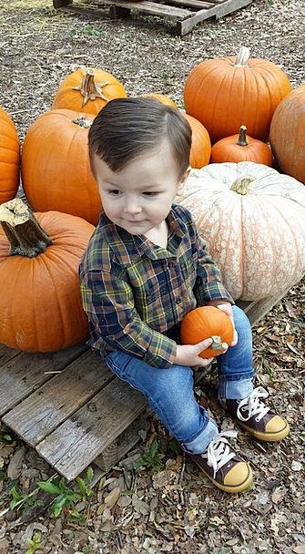 Pumpkin Reduction Boy Lad Fall