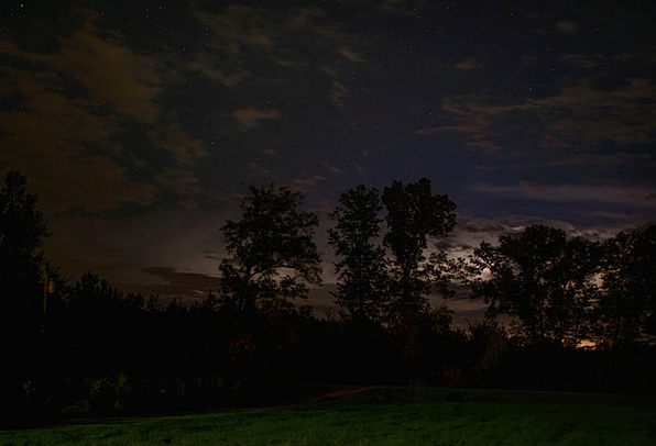 Stars Costars Nightly Dark Dim Night Nightsky Tree