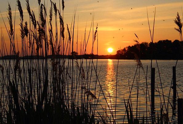 Sunset Sundown Vacation Set Travel Grasses Lawns B