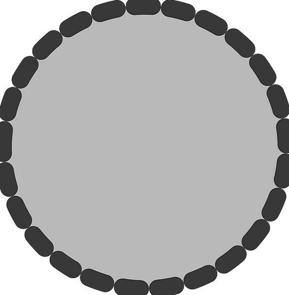 Circle Ring Rotund Shape Form Round Free Vector Gr
