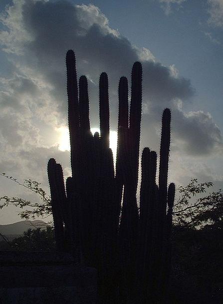 Venezuela Landscapes Scenery Nature Sunset Sundown