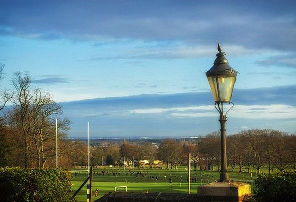 Epsom College Great Britain England Nature Trees P