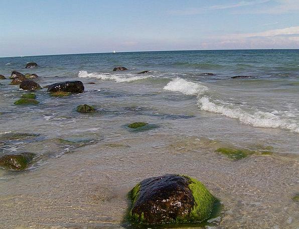 Rügen Vacation Seashore Travel Water Aquatic Beach