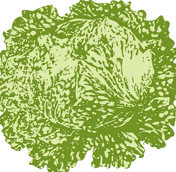 Lettuce Drink Verdant Food Vegetable Plant Leafy F