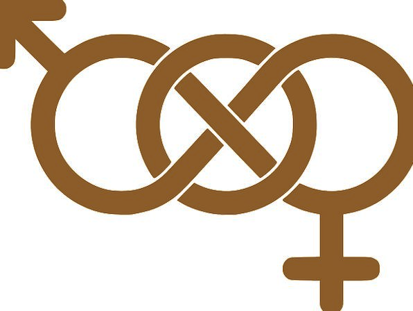 Male Masculine Feminine Symbols Ciphers Female Fre