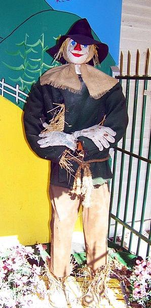 Scarecrow Sorcerer Straw Man Wizard Straw Grass Sc