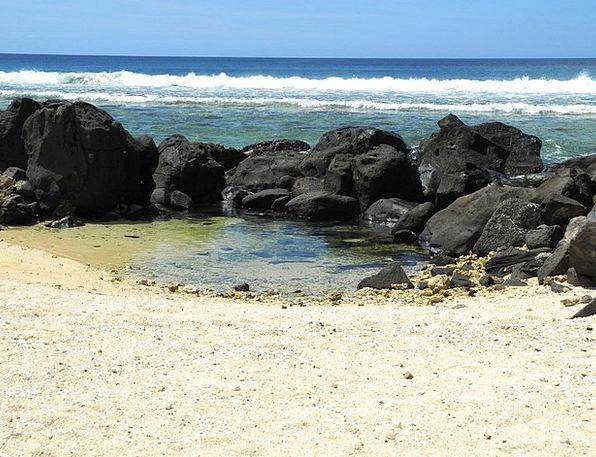 Sea Marine Upsurge Surf Spray Wave Wide Extensive