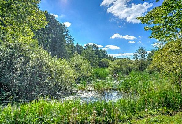 Stockholm Landscapes Nature Nature Countryside Swe