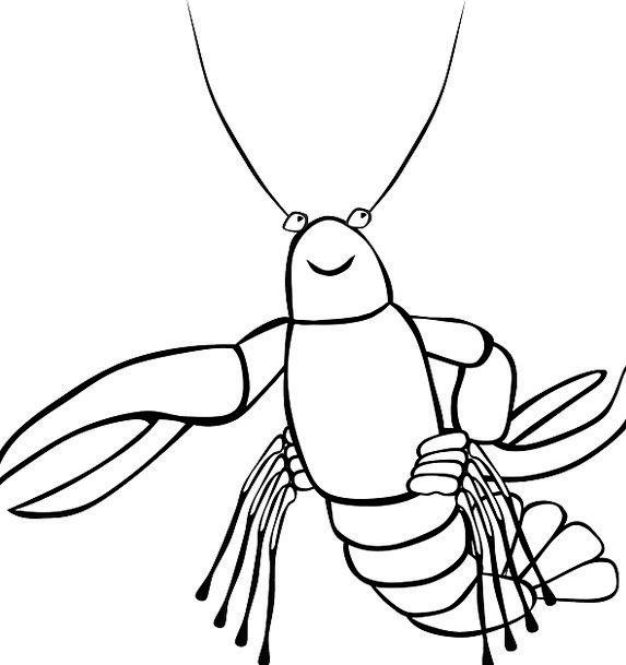 Crayfish Drink Marine Food Food Nourishment Sea Fi