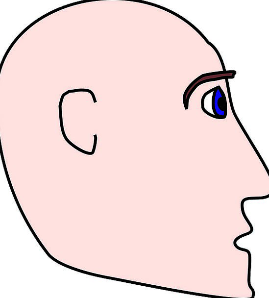 Man Gentleman Bare Head Skull Bald Face Expression