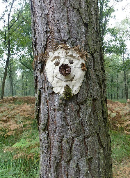 Tree Face Landscapes Nature Face Expression Tree S