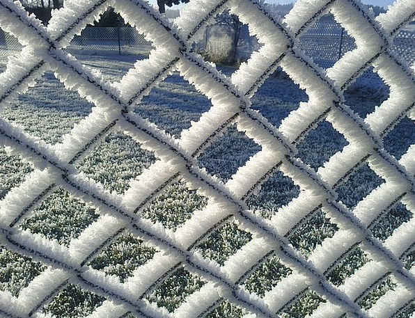 Wire Mesh Fence Ice Frost Frozen Fence Barrier Col