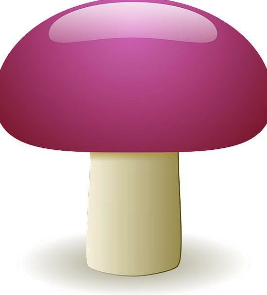 Mushroom Burgeon Drink Food Natural Usual Fungus V