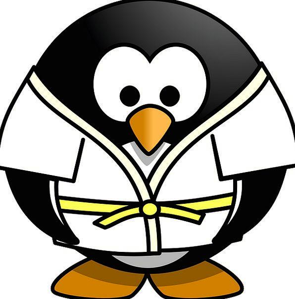 Judo Sports Sporting Penguin Tux Free Vector Graph