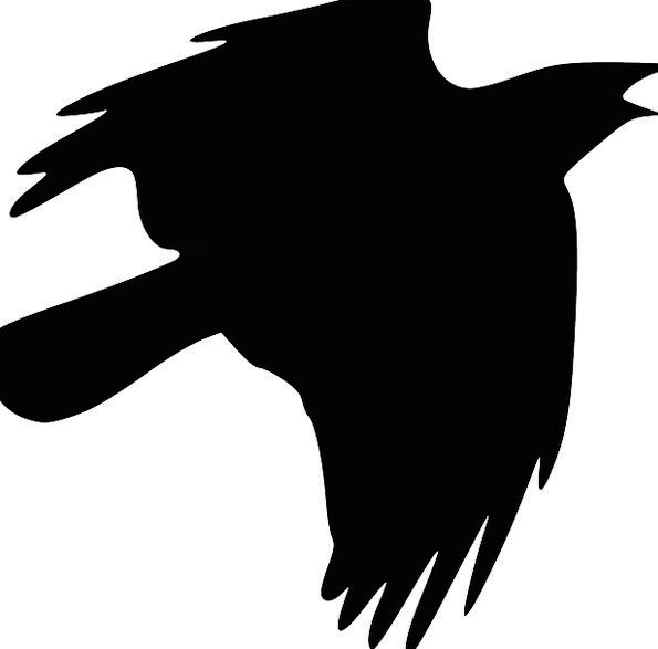 Flying Hovering Scoff Silhouette Outline Raven Hal