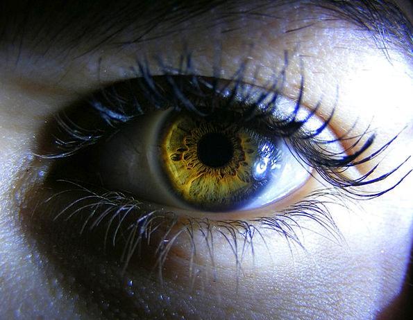 Eye Judgment Chocolate Yellow Creamy Brown Light B