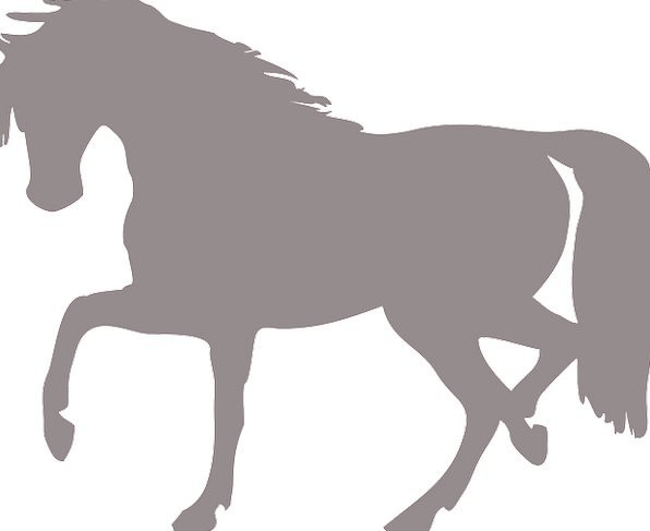 Horse Mount Outline Isolated Remote Silhouette Wil