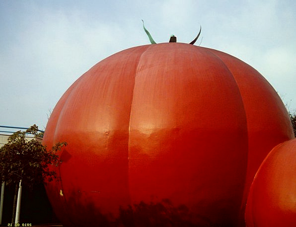 Tomato Drink Bloodshot Food Food Nourishment Red M