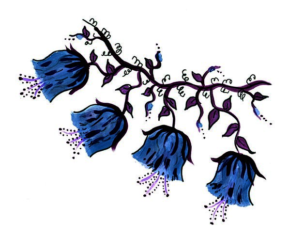 Blue Azure Craft Plants Industry Vine Creeper Flow