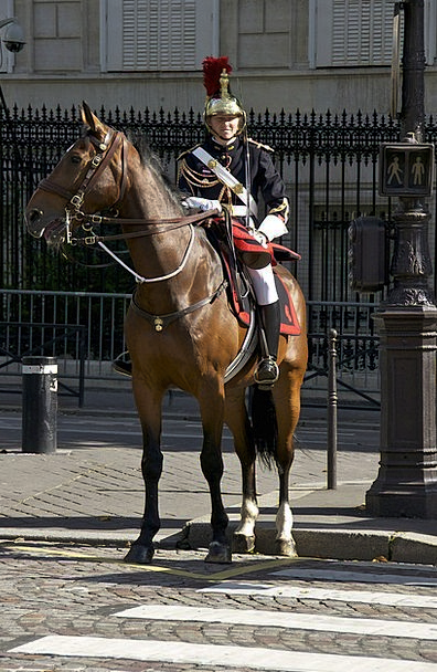 Cavalry Mounted troops Mount Military Armed Horse